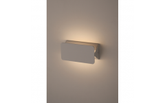 WL5 WH Светильник ЭРА Декоративная подсветка светодиодная 5Вт IP 20 белый